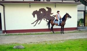 konie z 11 nogami_1