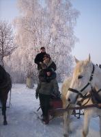 Konie_5